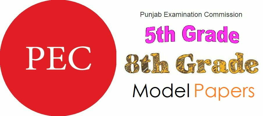 Punjab PEC 5th & 8th Grade Past Paper, Solved Paper 2019