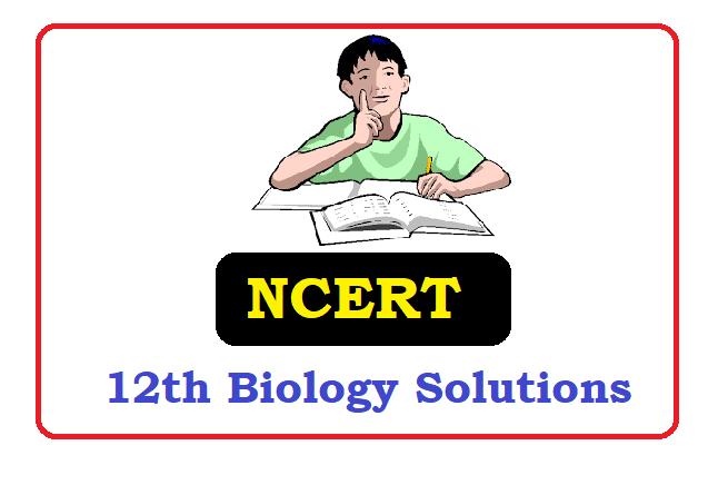 NCERT Class 12  Biology  Solutions 2020